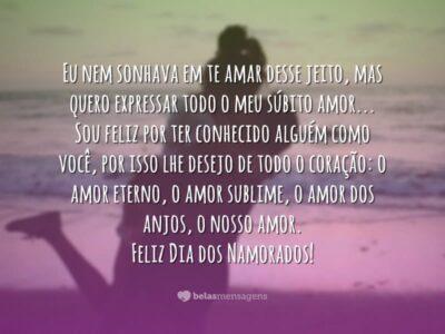 Amores Estou De Volta Para Loucura De Vocês-7996