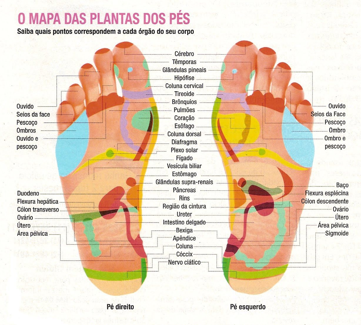 Trabalho Com Massagens Holísticas E Sensuais Relaxante Na Maca R-4495